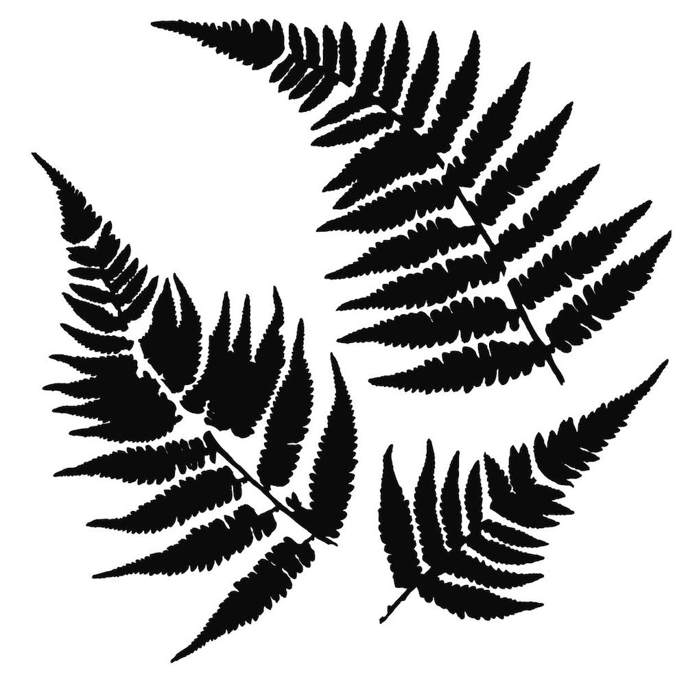 The Crafter's Workshop MINI FERNS 6 x 6 Template TCW243s zoom image