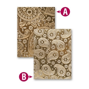 EL-010 Spellbinders PAISLEY Embossing Folder Preview Image