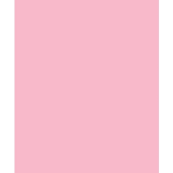 Bazzill COTTON CANDY Card Shoppe Heavy Weight 8.5 x 11 Cardstock