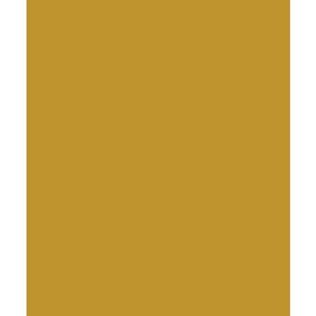 Bazzill GOLD COINS Card Shoppe Heavy Weight 8.5 x 11 Cardstock